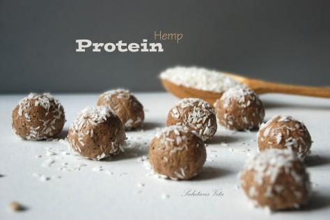 hemp seeds protein power balls