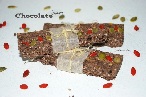 raw chocolate protein bars