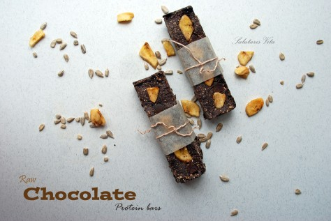 raw chocolate protein bars