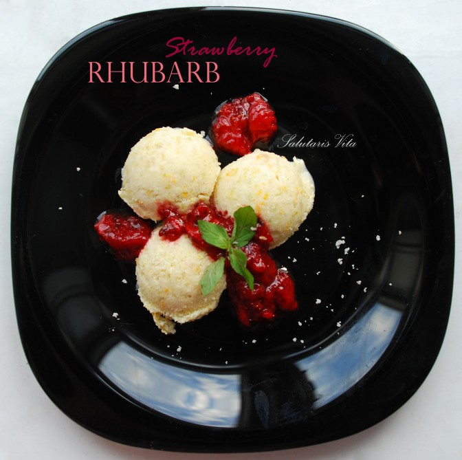 Rhubarb Strawberry Ice Nice Cream