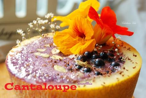 cantaloupe protein smoothie