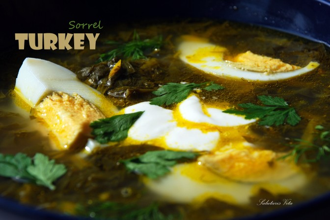 Turkey Sorrel Soup. Зелений Борщ.