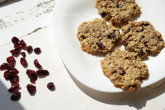 Chewy Oatmeal Raisin Cookies. Вівсяне Печення з Родзинками та Соняшниковим Насінням.